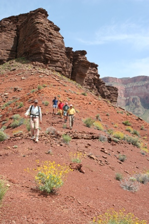 Grand Canyon Hikers Discovery