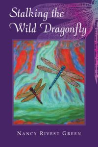 Stalking the Wild Dragonfly