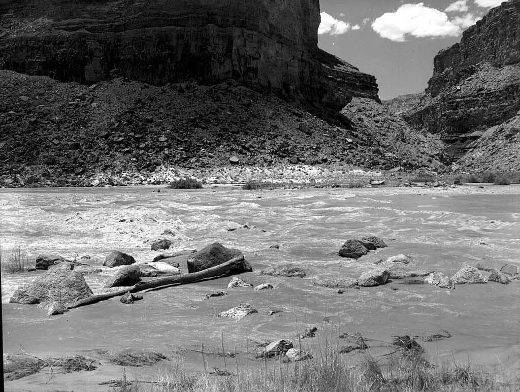 Badger Rapid-Rapids of the Colorado River
